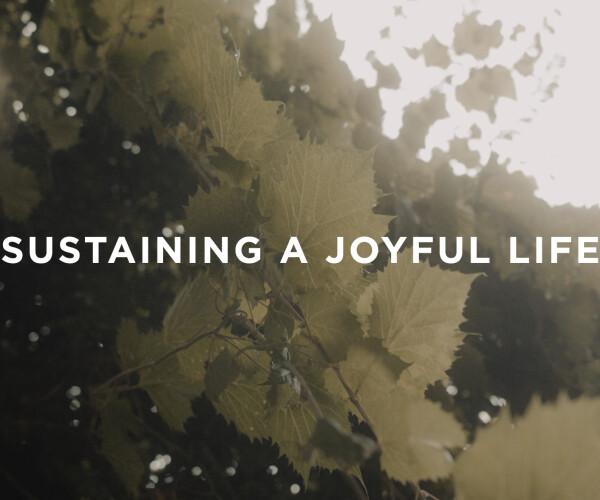Sustaining a Joyful Life