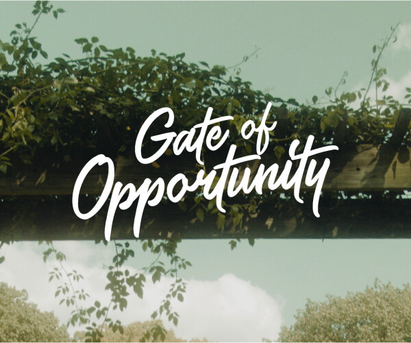 Gate of Opportunity